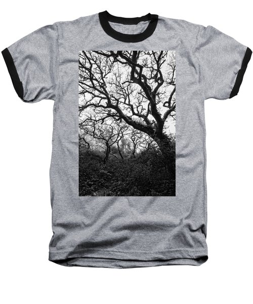 Gothic Woods II Baseball T-Shirt by Marco Oliveira