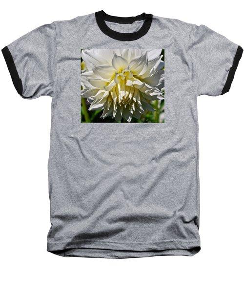 Graceful Dahlia  Baseball T-Shirt