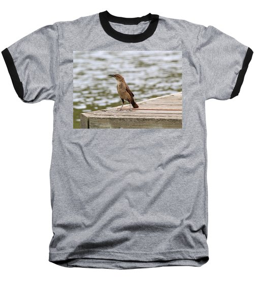 Grackle On A Dock Baseball T-Shirt