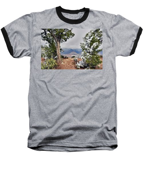 Grand Canyon Through The Trees Baseball T-Shirt by Debby Pueschel