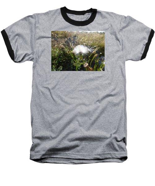 Grand Manan Dandelion  Baseball T-Shirt