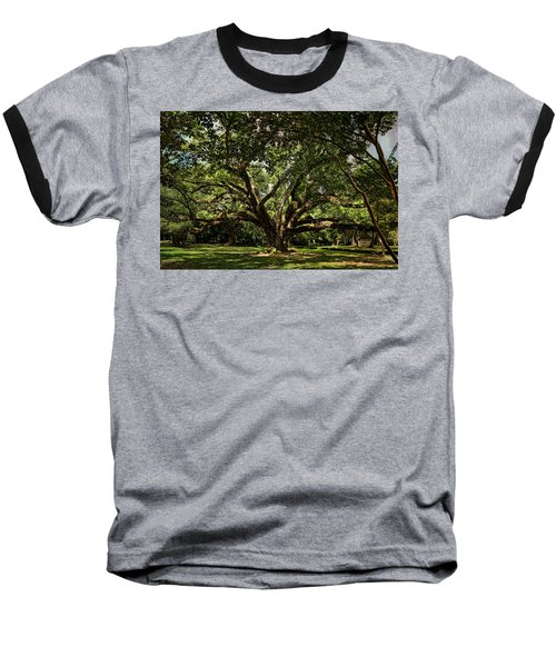 Grand Oak Tree Baseball T-Shirt by Judy Vincent