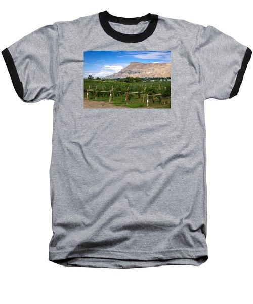 Grand Valley Vineyards Baseball T-Shirt by Teri Virbickis