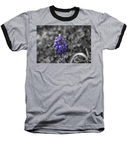 Grape Hyacinth Baseball T-Shirt