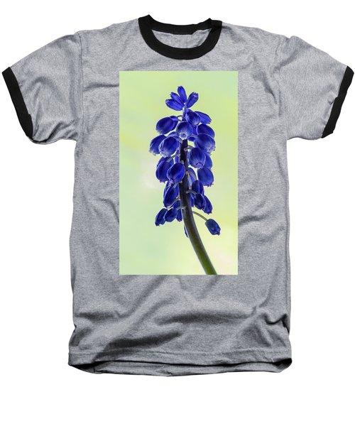 Grape Hyacinth Baseball T-Shirt