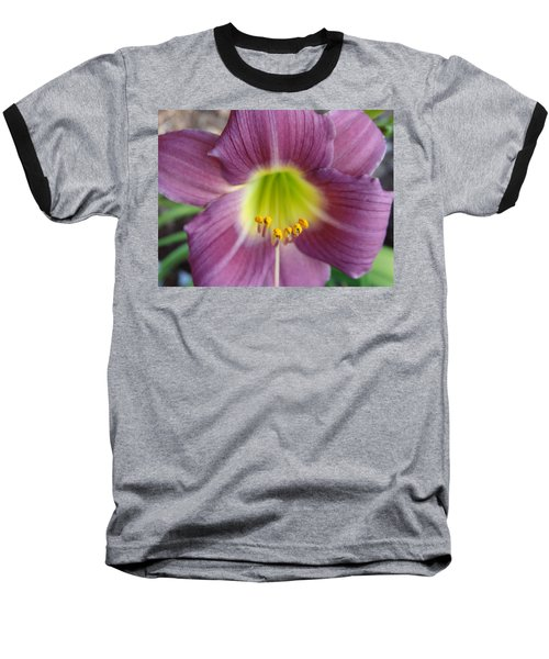 Grape Purple Daylilies  Baseball T-Shirt by Rebecca Overton
