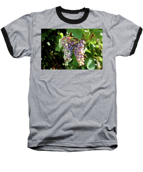 Grapes In Color  Baseball T-Shirt