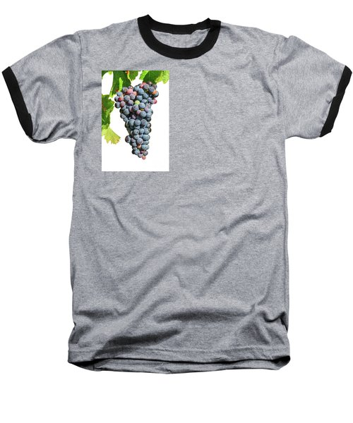 Grapes On Vine Baseball T-Shirt