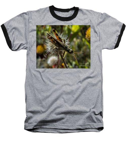 Grasshopper 1 Baseball T-Shirt