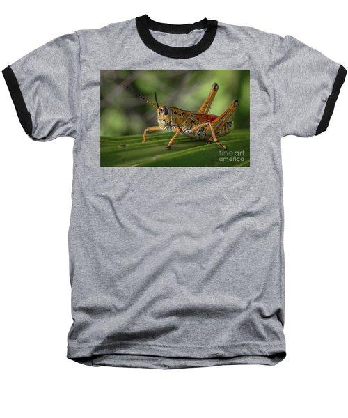 Grasshopper And Palm Frond Baseball T-Shirt