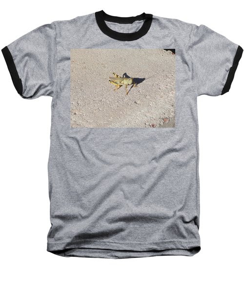 Grasshopper Curiosity Baseball T-Shirt
