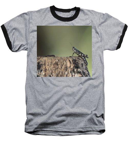 Grasshopper Great River New York Baseball T-Shirt by Bob Savage