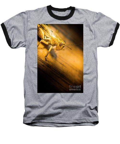 Grasshopper Under Shining Yellow Light Baseball T-Shirt