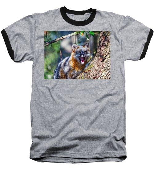 Gray Fox Awakens In The Tree Baseball T-Shirt