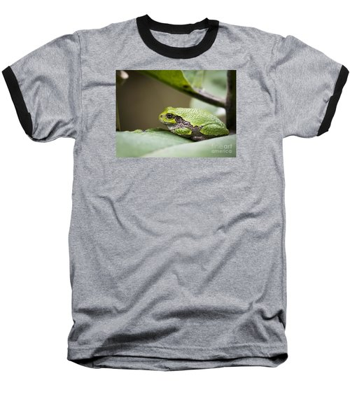 Baseball T-Shirt featuring the photograph Gray Tree Frog - North American Tree Frog by Ricky L Jones