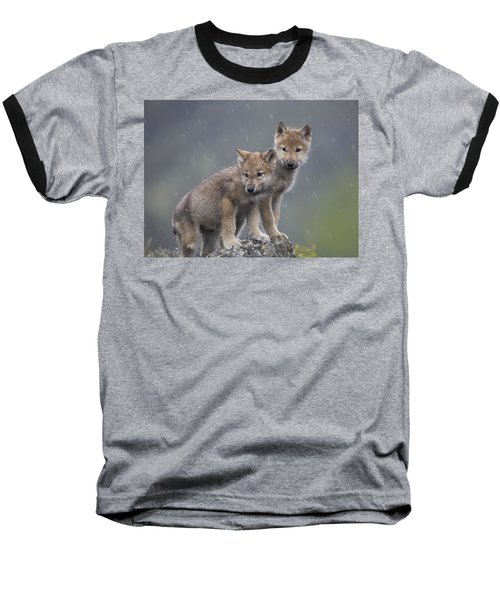 Gray Wolf Canis Lupus Pups In Light Baseball T-Shirt