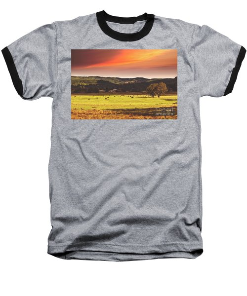 Grazing Baseball T-Shirt