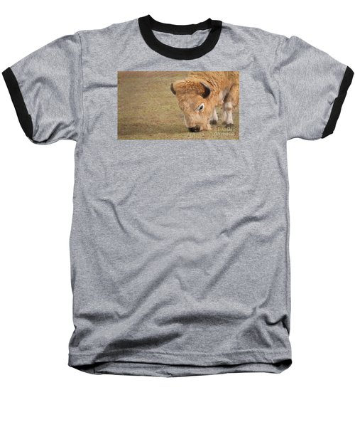 Grazing Buffalo Baseball T-Shirt by Laurinda Bowling