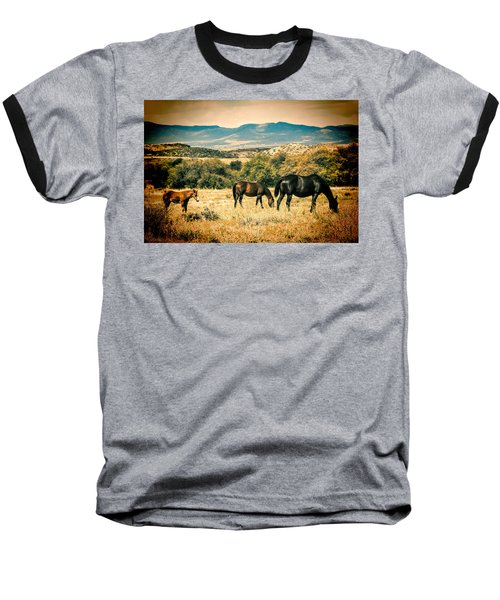 Grazing Baseball T-Shirt