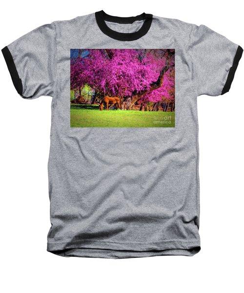 Grazing Horse  ... Baseball T-Shirt by Chuck Caramella