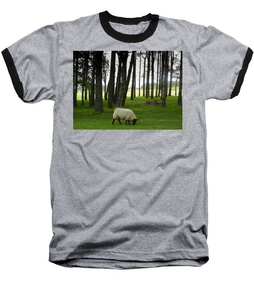 Grazing In The Woods Baseball T-Shirt
