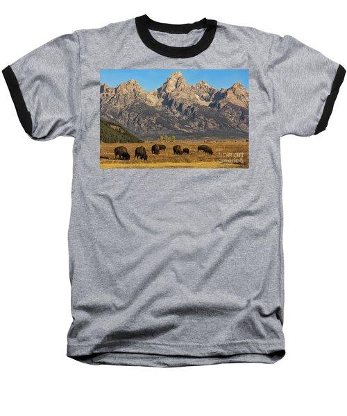 Grazing Under The Tetons Wildlife Art By Kaylyn Franks Baseball T-Shirt