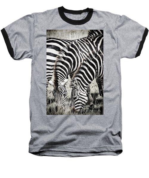 Grazing Zebras Close Up Baseball T-Shirt by Darcy Michaelchuk