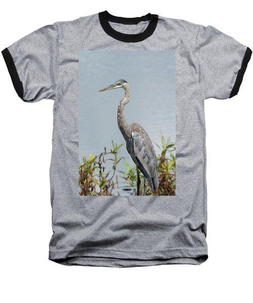 Great Blue Heron #2 Baseball T-Shirt
