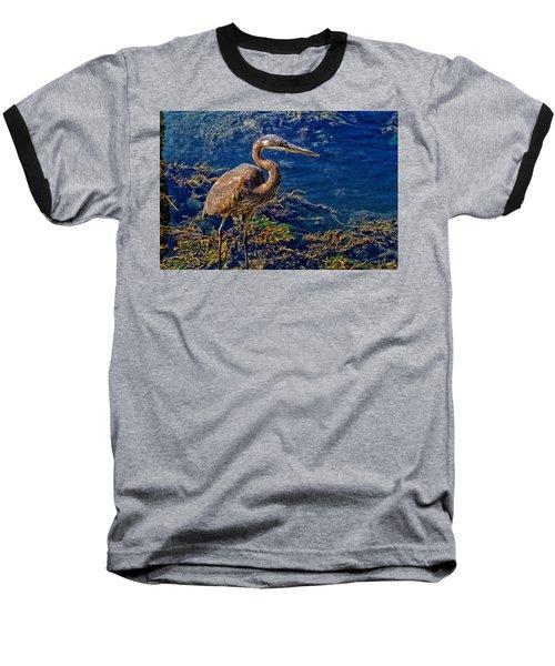 Great Blue Heron And Seaweed Baseball T-Shirt