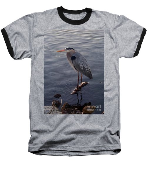 Baseball T-Shirt featuring the photograph Great Blue Heron At Evening by Carol  Bradley