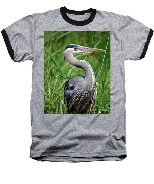 Great Blue Heron Close-up Baseball T-Shirt