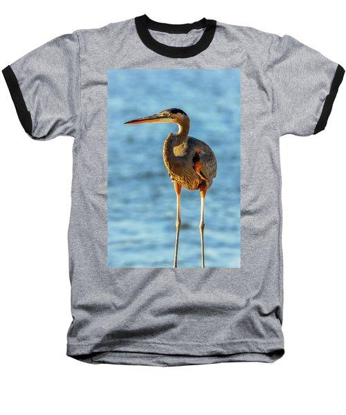 Great Blue Heron Closeup Baseball T-Shirt