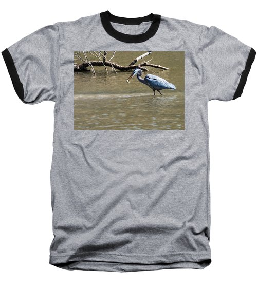 Great Blue Heron Dinning Baseball T-Shirt