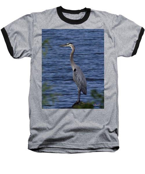Great Blue Heron Dmsb0001 Baseball T-Shirt