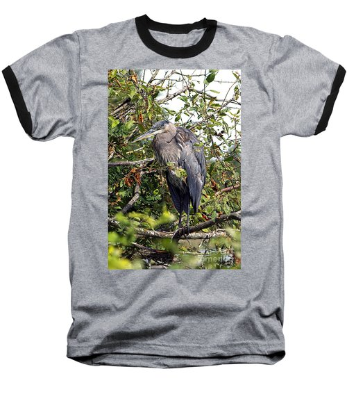 Great Blue Heron In A Tree Baseball T-Shirt