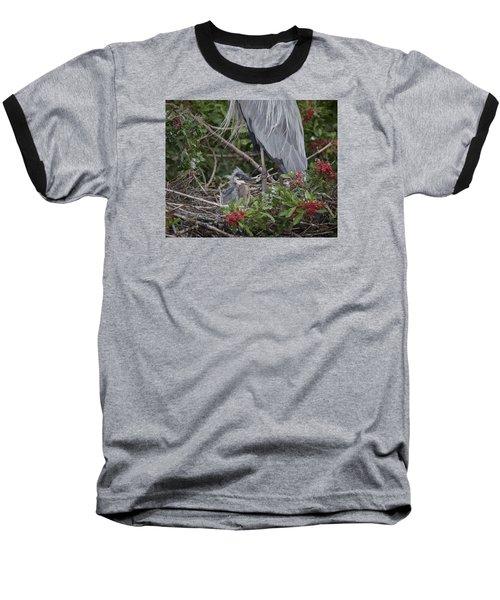 Great Blue Heron Nestling Baseball T-Shirt