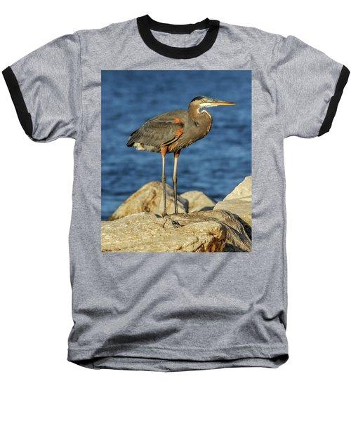 Great Blue Heron On Rock Baseball T-Shirt