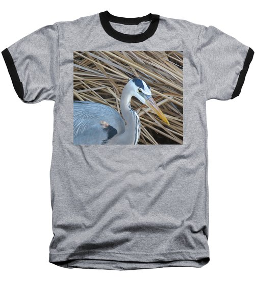 Great Blue Heron On Spi Baseball T-Shirt