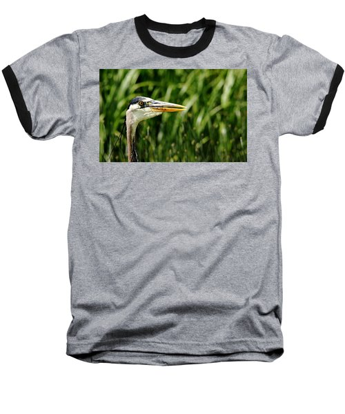 Great Blue Heron Portrait Baseball T-Shirt by Debbie Oppermann