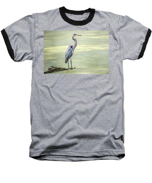 Great Blue Heron Standing In A Marsh Baseball T-Shirt