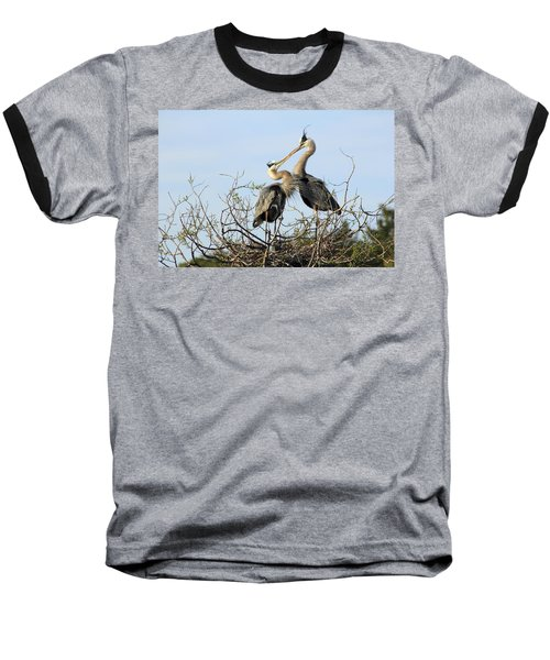 Great-blue Herons On Nest At The Venice Rookery, Florida Baseball T-Shirt