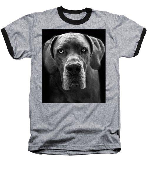 Great Dane  Baseball T-Shirt by Alex Galkin