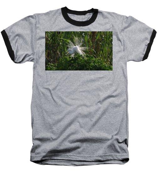 Great Egret Displays Windy Mating Plumage Baseball T-Shirt