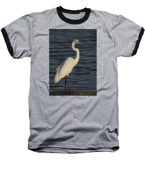 Great Egret In The Last Light Of The Day Baseball T-Shirt