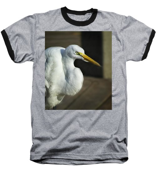 Great Egret Portrait Baseball T-Shirt
