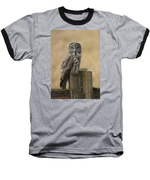 Baseball T-Shirt featuring the photograph Great Gray Owl by Doug Herr