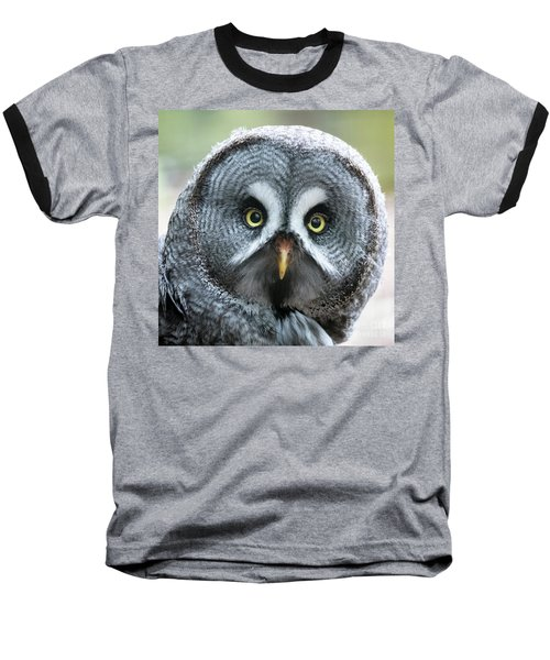 Great Grey Owl Closeup Baseball T-Shirt