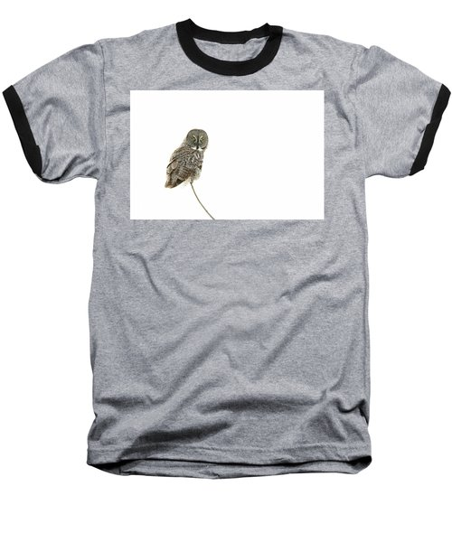 Baseball T-Shirt featuring the photograph Great Grey Owl On White by Mircea Costina Photography
