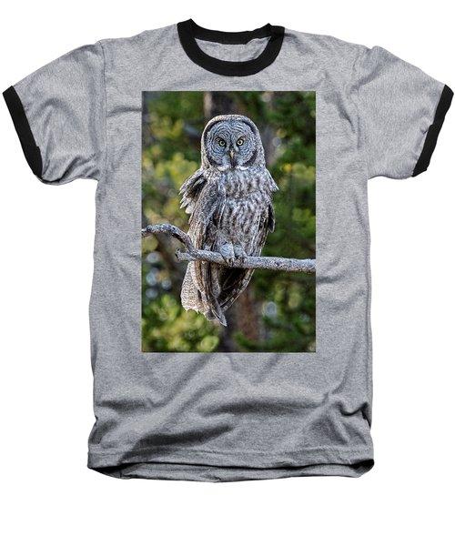 Great Grey Owl Yellowstone Baseball T-Shirt
