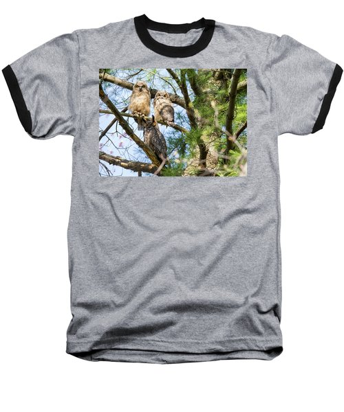 Great Horned Owl Family Baseball T-Shirt